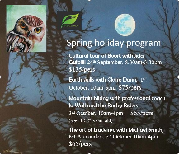 Spring holiday program website